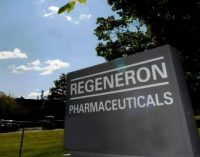 Regeneron plan is ahead of schedule