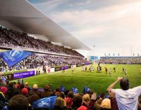 RDS plans €35m spend to redevelop its main stadium