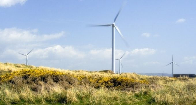 ESB and Coillte in Discussions to Deliver Renewable Energy Projects