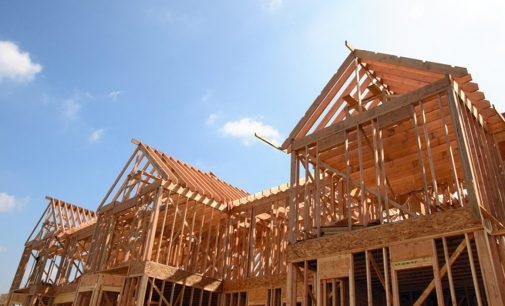 Home-building potential of Irish wood underlined in new poll